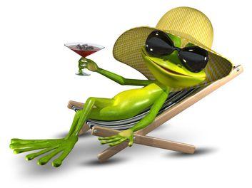 Garten Frosch auf Urlaub